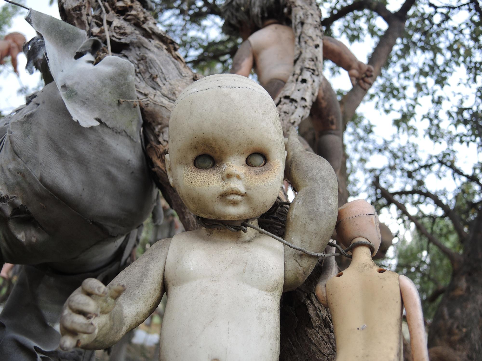 Die Puppeninsel